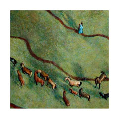 from above a herd of horses trails through the grass by meandering paths